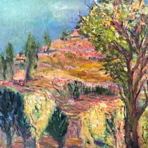 Black Cypress Pine